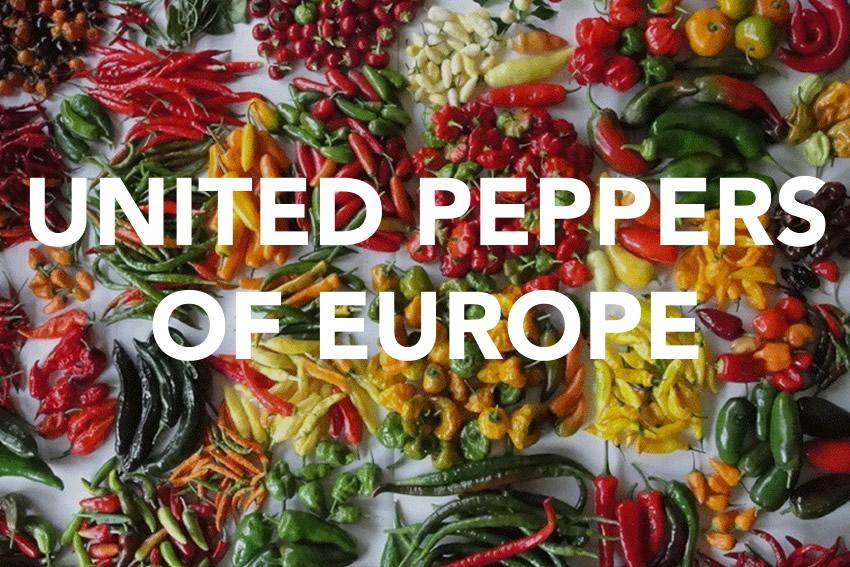 UNITED PEPPER OF EUROPE
